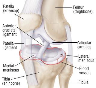 Popping Knees No Pain Natural Treatment